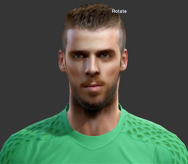 PES 2013 David de Gea Face by Turtle Facemaker