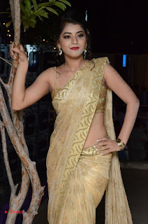 Actress Yamini Bhasker Pictures in Saree at anic Movie Audio Launch  0050.JPG