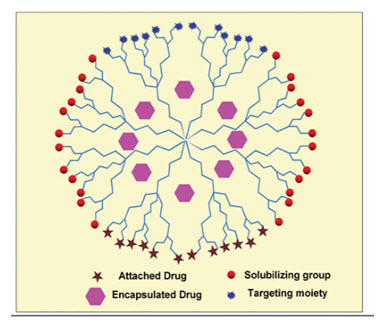 dendrimers in drug delivery pdf