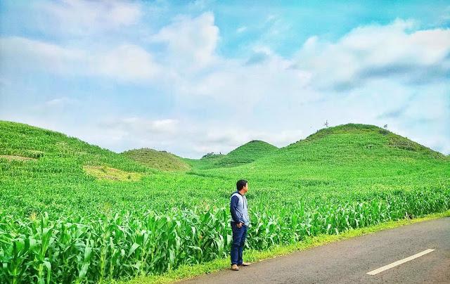 Gunung bagusmirip bukit wairinding di sumba, nusa tenggara timur