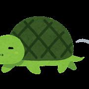足の遅い亀のイラスト