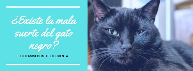 (Imagen) la famosa leyenda del gato negro y su susodicha mala fama