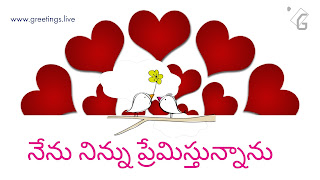 Love symbols Two love bird's Telugu love Proposal Greetings HD