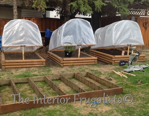 Mini greenhouses with raised beds tilted tops for ventilation