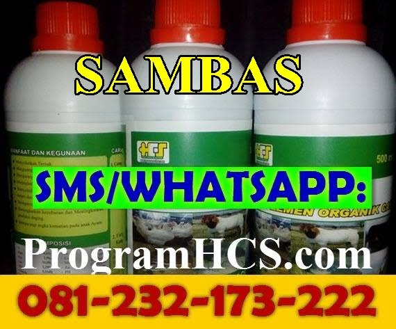 Jual SOC HCS Sambas