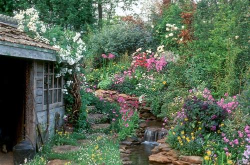 strumyk w ogrodzie, potok w ogrodzie