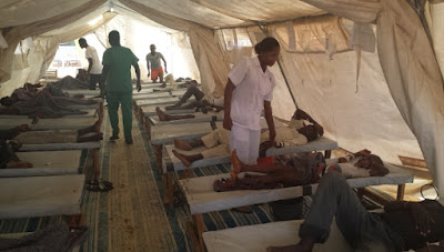 Cholera Outbreak Kills 48 In Borno IDP Camps