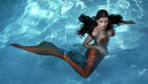 عروسة البحر، حورية البحر، حقيقة عروسة البحر، عروس البحر