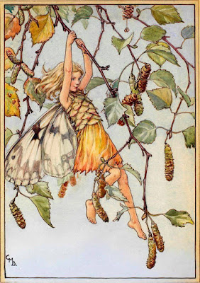 Ξωτικά των λουλουδιών / Flower Fairies, illustration by by Cicely Mary Barker