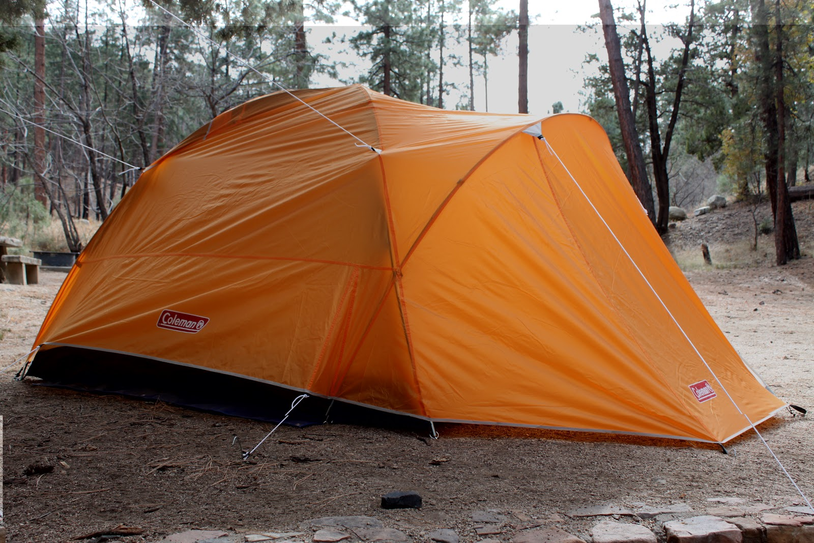 Coleman Hooligan 3 Tent Review & Stereowise Plus: Coleman Hooligan 3 Tent Review