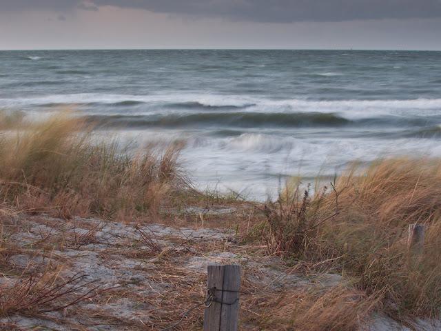 Die Ostsee bei Zingst.