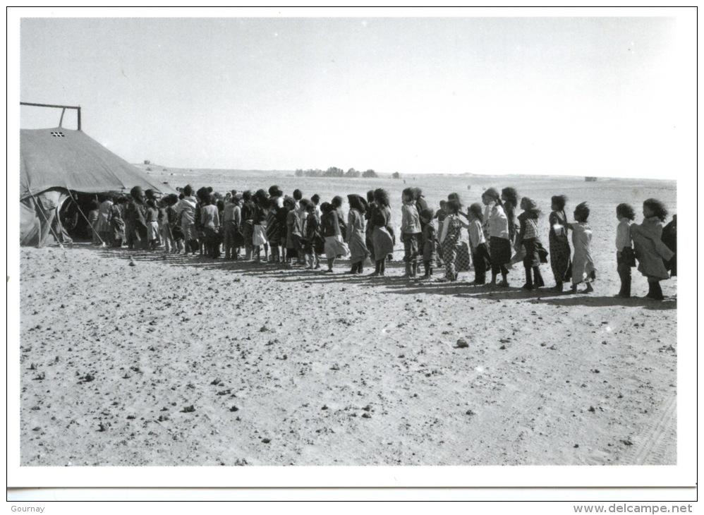 Poemario por un Sahara Libre: Exilio IV, Bahia Mahmud Awah