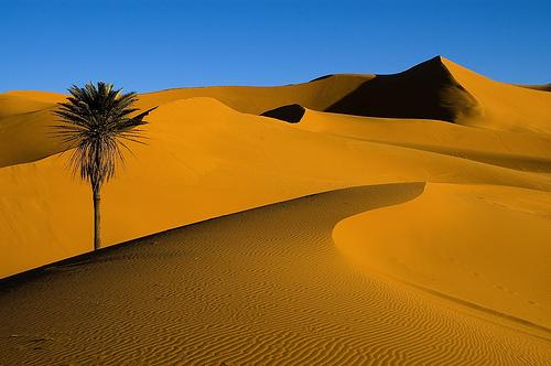 حمامات الرمل مرزوكة Merzouga تساعد في علاج بعض الأمراض المزمنة