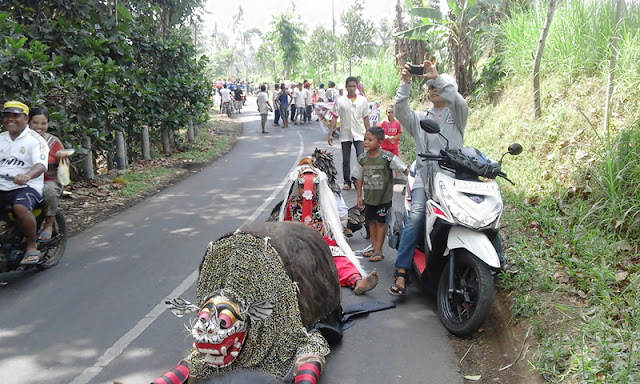 barongngi,  banyuwasebbarong banyuwangi, seblang banyuwangi, the mistic of seblang, the legend of banyuwangilang banyuwangi, the mistic of seblang, the legend of banyuwangi