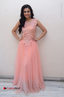 Actress Neha Hinge Stills in Pink Long Dress at Srivalli Teaser Launch  0150.JPG
