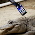 Here's What Happens When An Alligator Snacks On iPhone 7