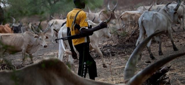 Suspected herdsmen in military uniforms attack Kaduna village, kill seven
