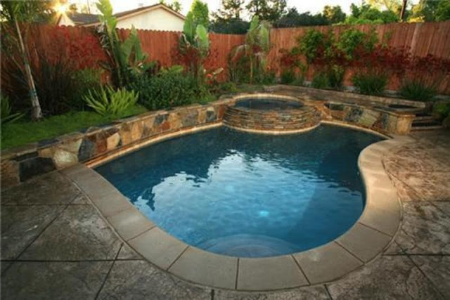 Backyard  Swimming Pool Landscaping Ideas