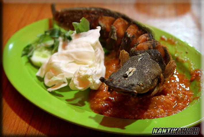 Jenis Makan Populer di indonesia