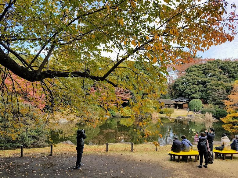 東京博物館內的庭園另一景,坐在椅子上享受