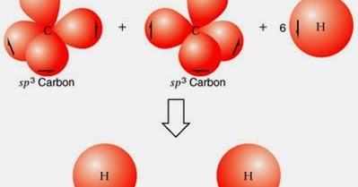 La Hibridacion Del Carbono Hibridacion Sp1 Sp2 Sp3