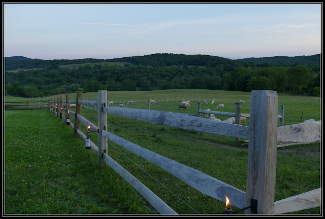 Dinner on the Farm - Dancing Ewe Farm in Granville NY