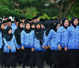 Rasionalisasi PNS Jadi Sejarah Pertama dalam Kepegawaian di Indonesia