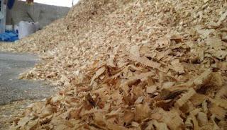 مشروع انتاج نشارة الخشب من الصفر