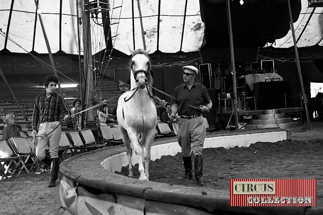 Répétition de dressage des chevaux de Fredy Knie senior  sous le chapiteau du Cirque National Suisse Knie  1970