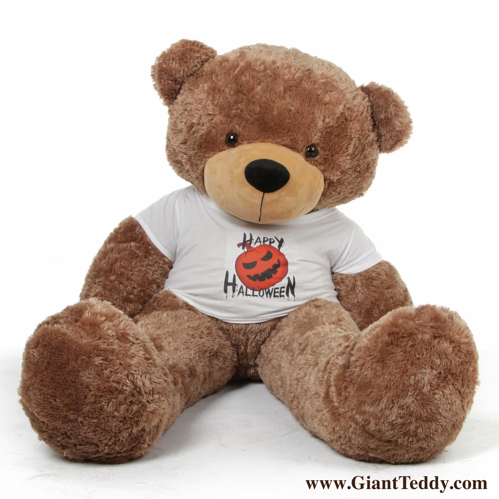 Sunny Cuddles is five feet of cute Happy Halloween Teddy Bear - he thinks his shirt is Pawesome!