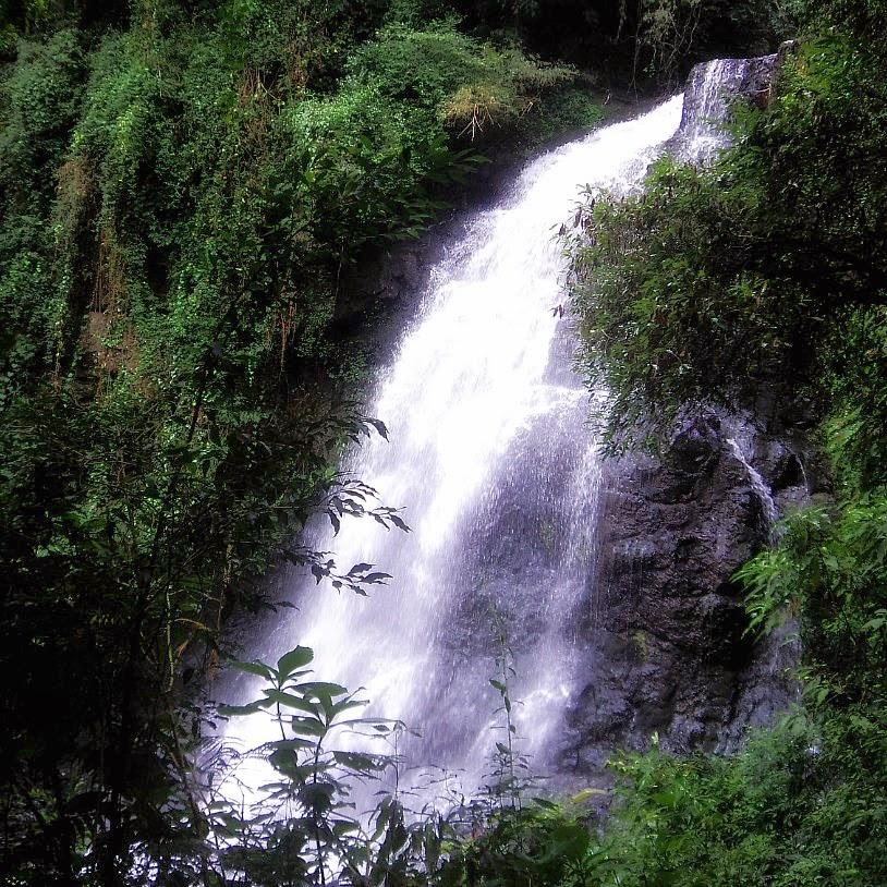 Cascata dos Narcisos: Atrativo Natural de Gramado