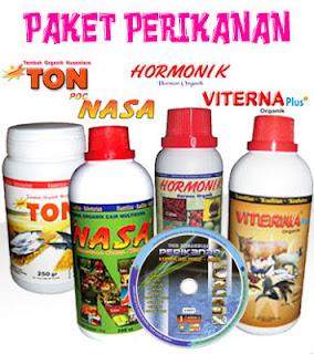 Image result for gambar produk nasa untuk bandeng