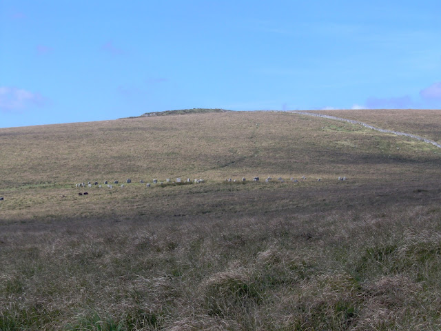 Greywethers stone circles on Dartmoor