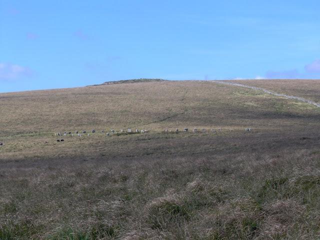 Greywethers stone circles on Dartmoor