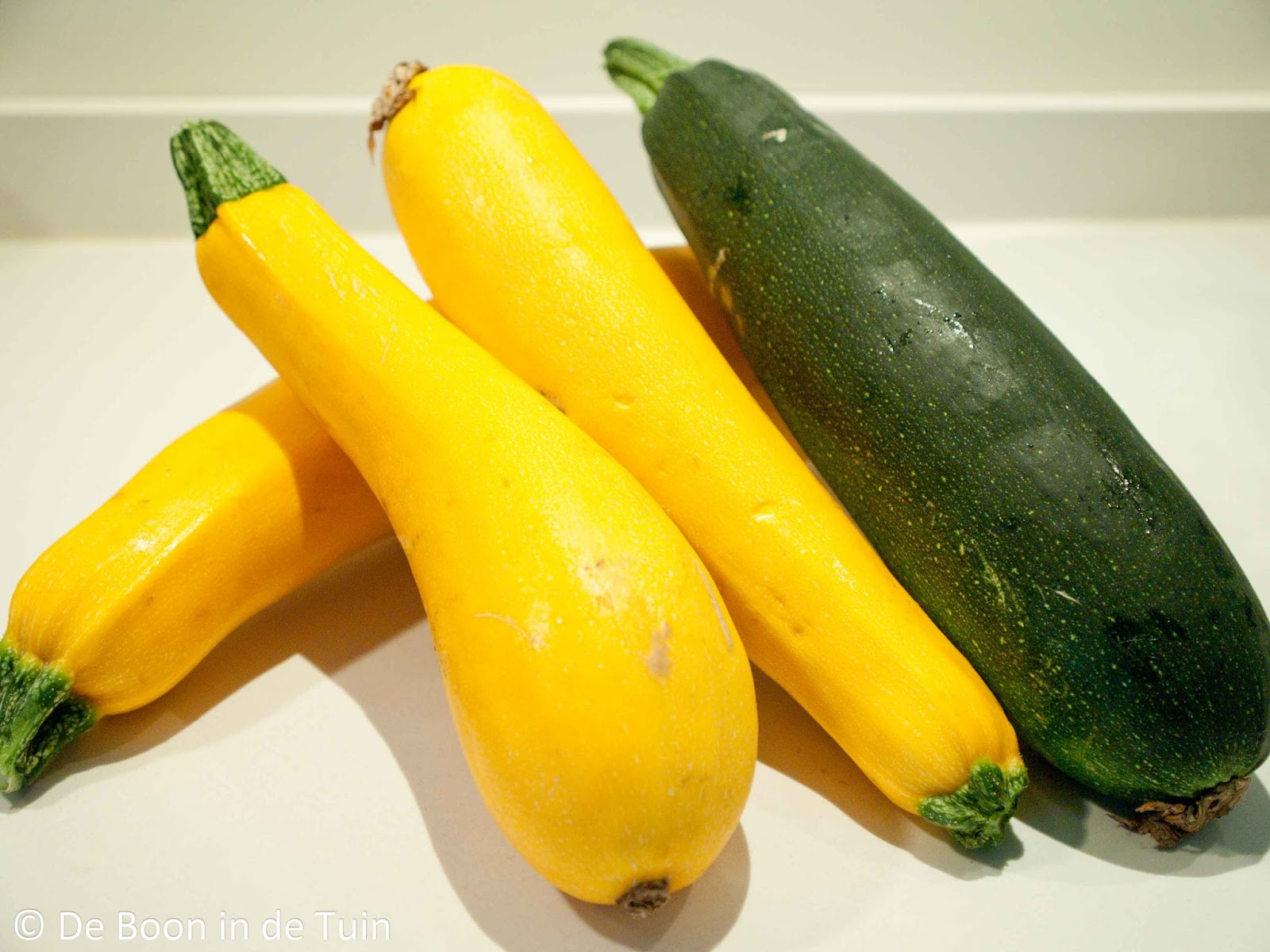 courgettes courgette recept soep gold rush