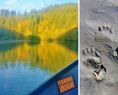 Sixes-river-Oregon