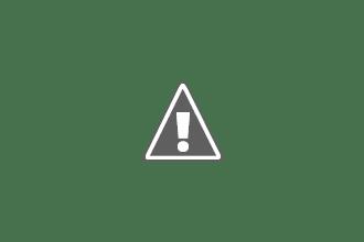 Music : Canopée - Polo & Pan