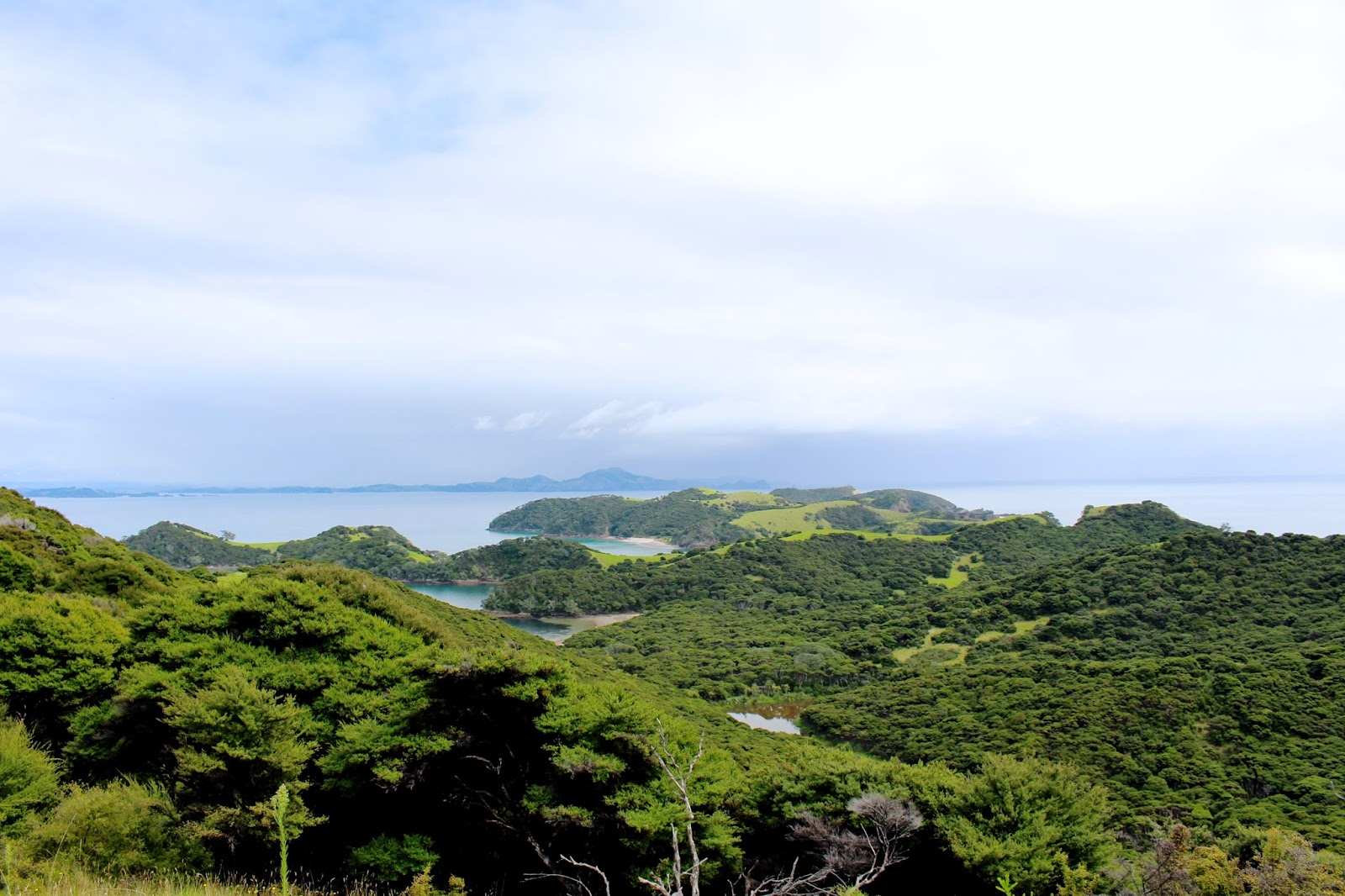 New Zealand's best hikes | Urapukapuka Island