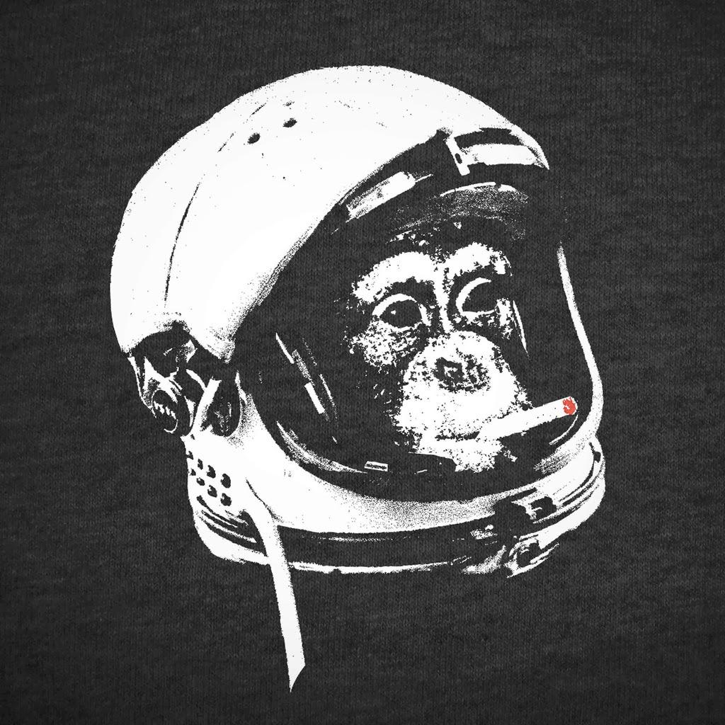 chimpanze astronaut - photo #22