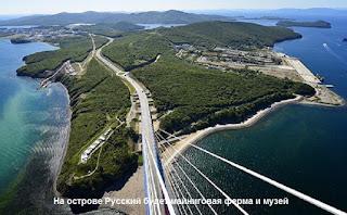 На острове Русский будет майниговая ферма и музей