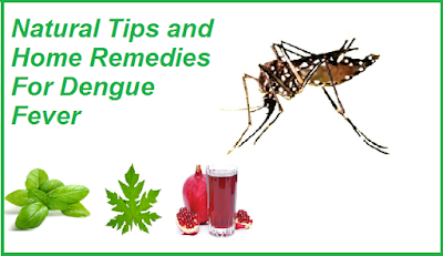 NATURAL TIPS AND REMEDIES FOR DENGUE FEVER ~ Natural Fitness Tips