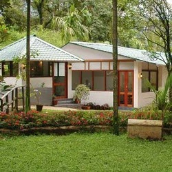 best resorts in munnar, budget resorts in munnar , glenmore resorts in munnar, munnar resorts and cottages