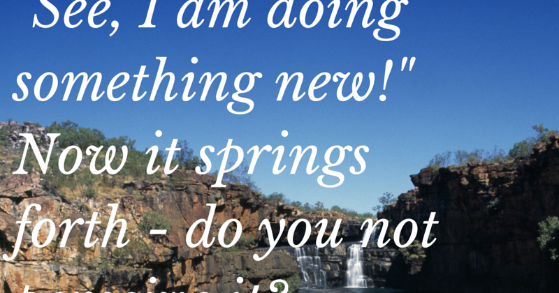 """I Am Doing This: Saints 365: """"See I Am Doing Something New!"""""""