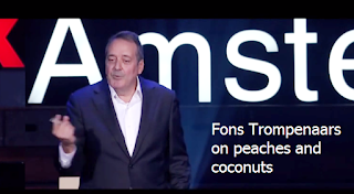 https://tedx.amsterdam/2013/11/fons-trompenaars-about-peaches-and-coconuts/