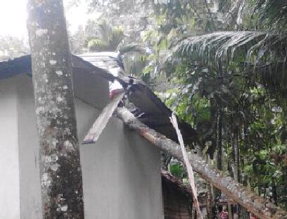 Rumah Warga Dihantam Angin Kencang, BPBK dan Dinsos Abdya Dinilai Lamban
