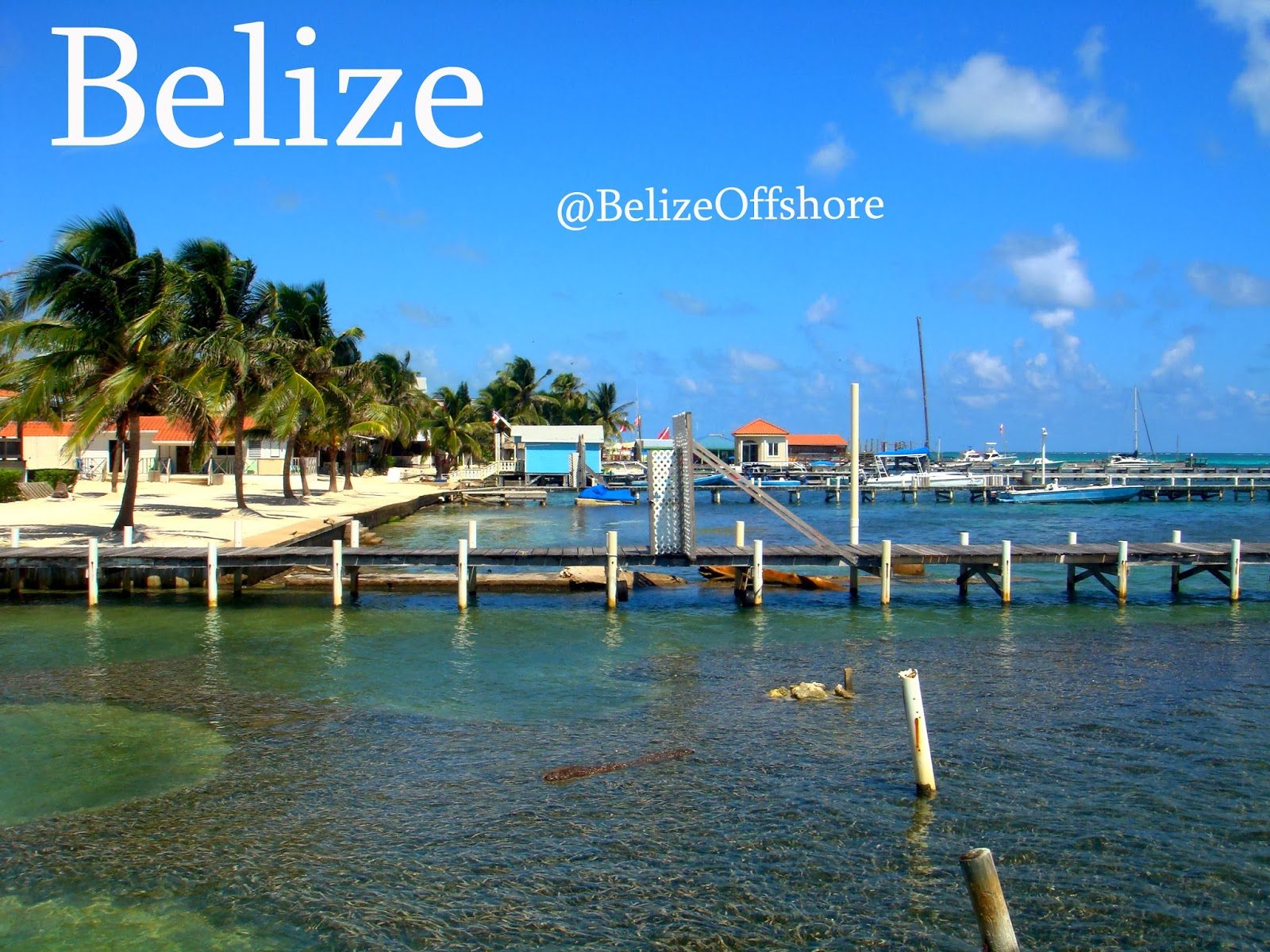 International Business Companies Ibc In Belize