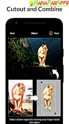 LightX Photo Editor & Photo Effects Pro Apk