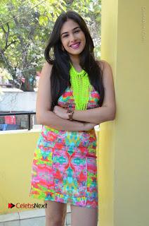 Telugu Actress Prasanna Stills in Short Dress at Inkenti Nuvve Cheppu Press Meet Stills  0130.JPG