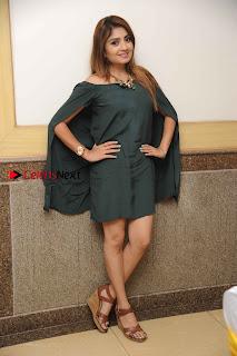 Kannada Actress Karunya Ram Stills in Strapless Green Short Dress at Eradu Kanasu Movie Press Meet  0013.jpg