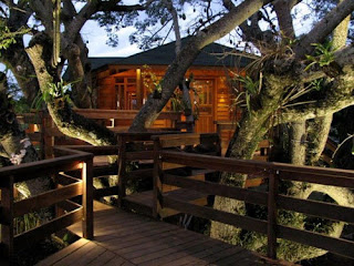 The-Most-Beautiful-Tree-House-Plans